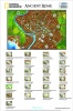 4DCity Puzzle - Starověký Řím (Nation.Geograph.)