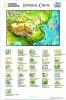4DCity Puzzle - Starověká Čína (Nation.Geograph.)