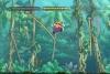 Wii Wario Land: The Shake Dimension