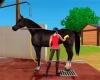 Dívčí vášeň pro jízdu na koni vstupuje do dalšího rozměru s Imagine champion rider 3D od Ubisoftu